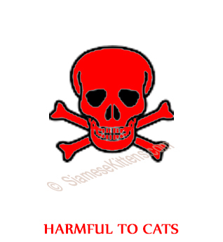 Harmful to Cats